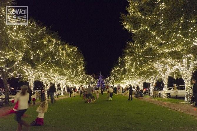 30-a-christmas-lights-3